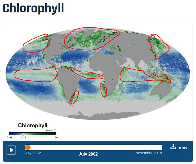 * Annoter pour décrire une répartition – Le cas du phytoplancton