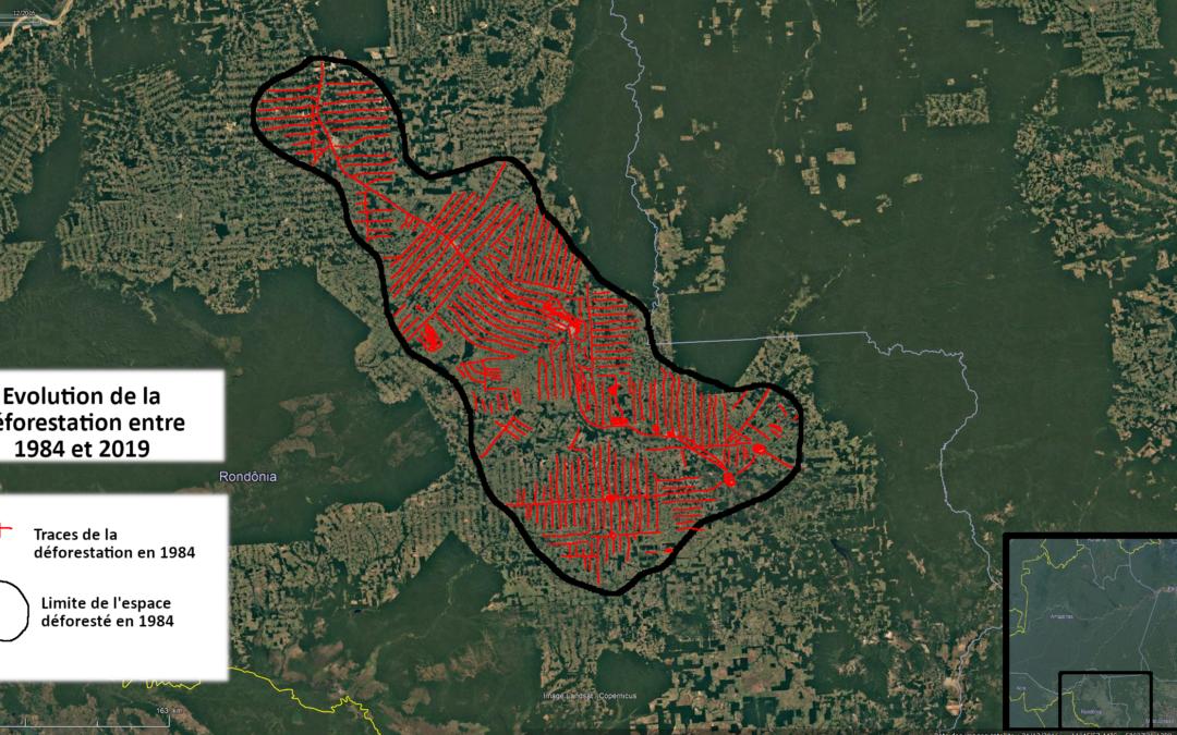 Déforestation – Le cas de l'évolution de la forêt en Amazonie (5e)