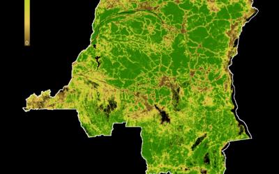 Le développement de la RDC, d'aujourd'hui et d'hier