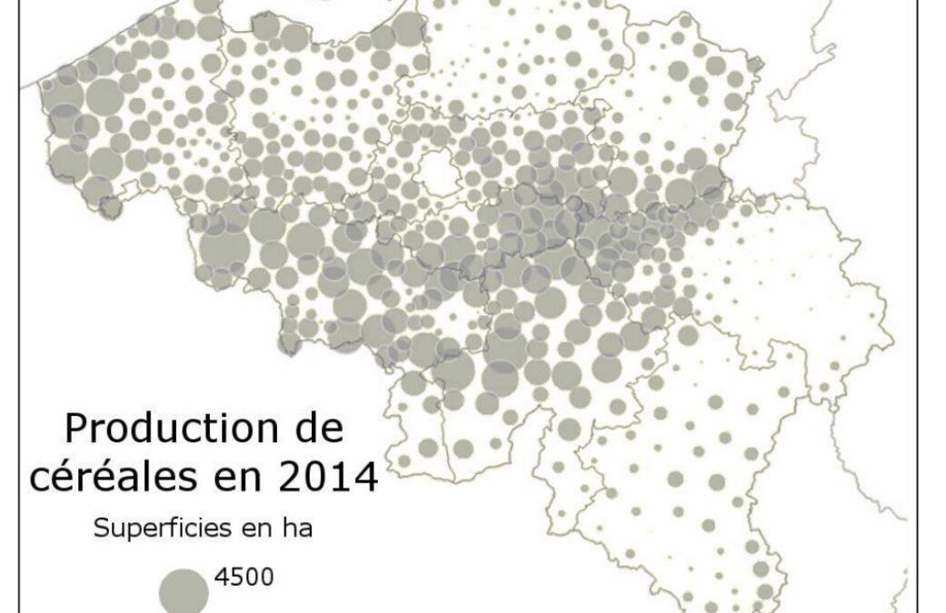 ***Identifier des atouts et des contraintes des milieux naturels. Le cas de la répartition de la production de céréales en Belgique. S.2/3