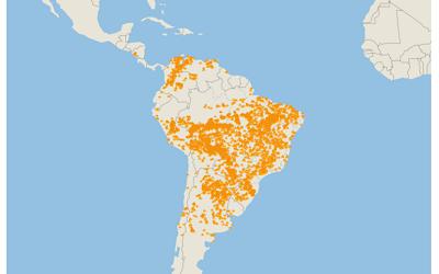 * Texte pour décrire la répartition des incendies en Amazonie