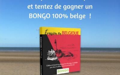 Annonce VAN IN – Tentez de gagner un Bongo en participant à une enquête sur les cours d'histoire/géographie !