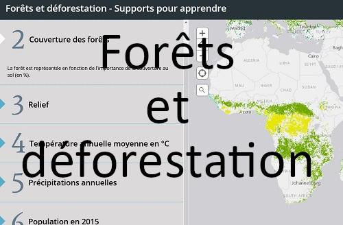 Forêts et déforestation